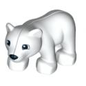 Oso polar bebé
