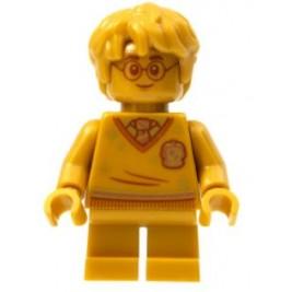 Harry Potter - Dorado - 20º Aniversario